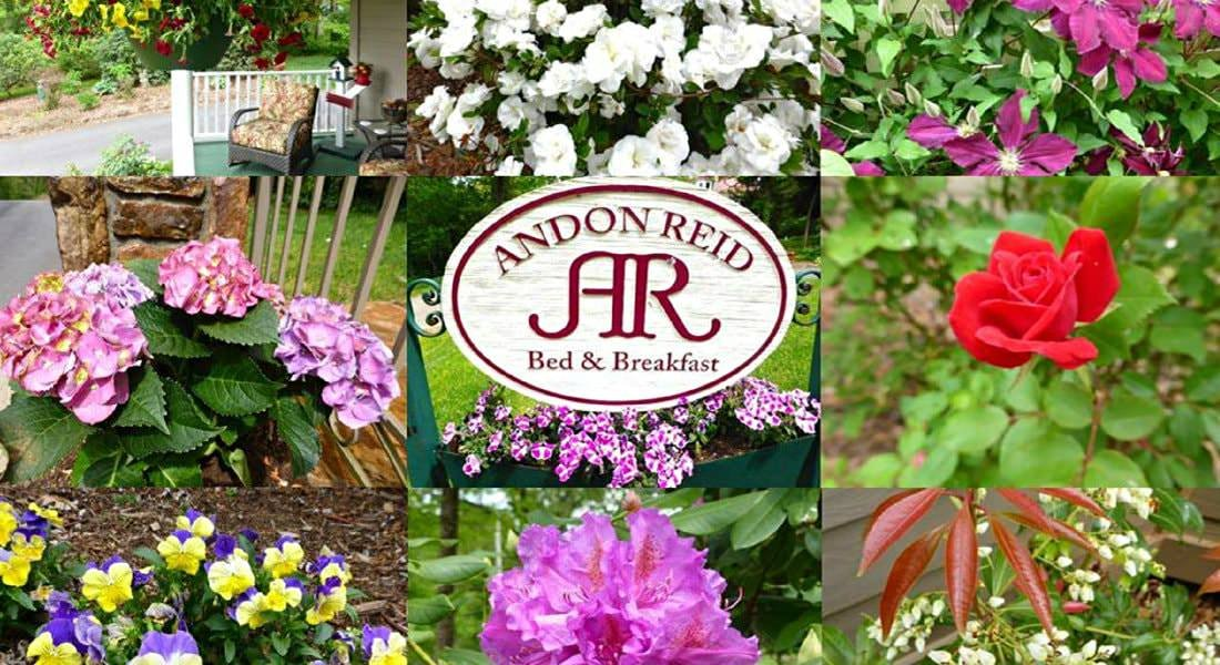 Photo collage of flowers in shades of white, pink, red, yellow, purple, a covered porch, and Andon Reid B&B sign